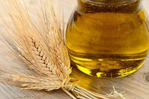 aceite de germen de trigo para el cabello
