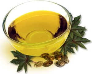 aceite de castor en ingles