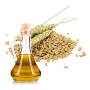 aceite de germen de trigo para los gluteos