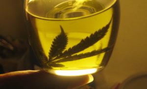 aceite de cannabis medicinal